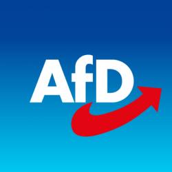 Deutschland und die AFD
